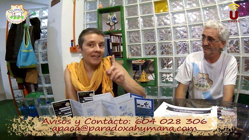 TV local de Utrera Entrevista APACA