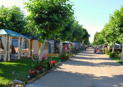 **Camping Hospital de Orbigo